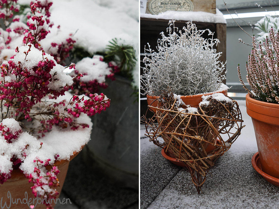 Winter Wonderland - Wunderbrunnen - Foodblog - Fotografie