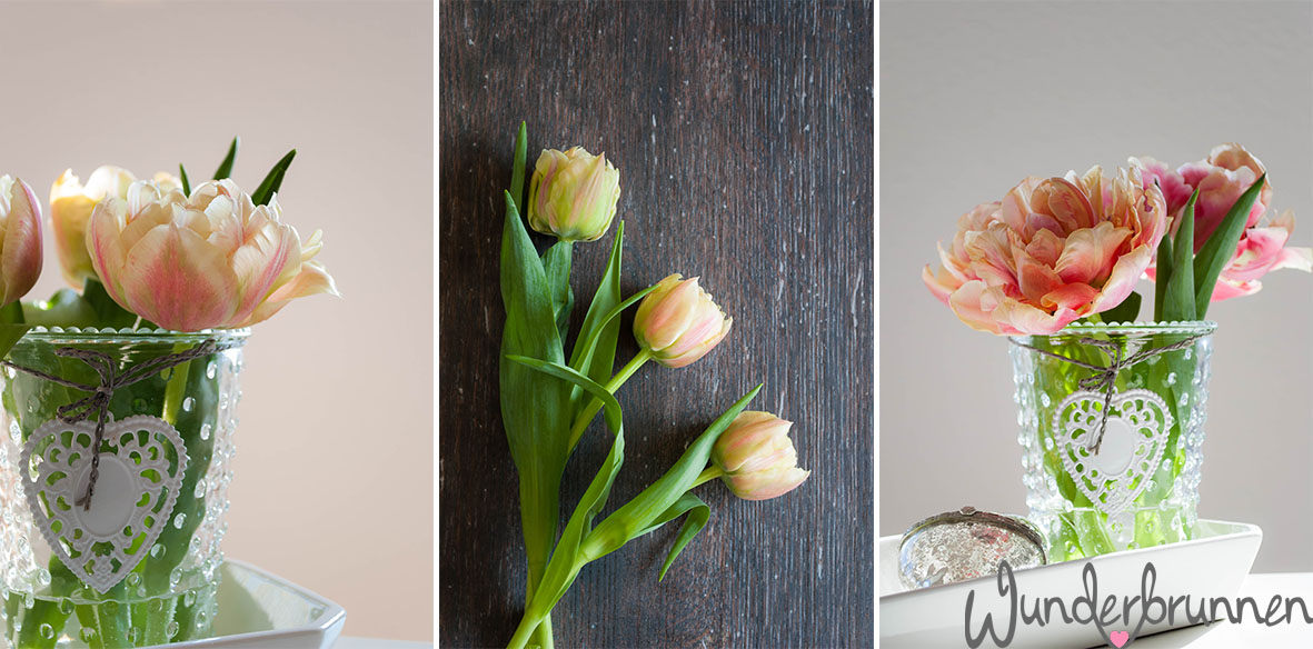 Tulpen vorher/nachher - Wunderbrunnen - Foodblog - Fotografie