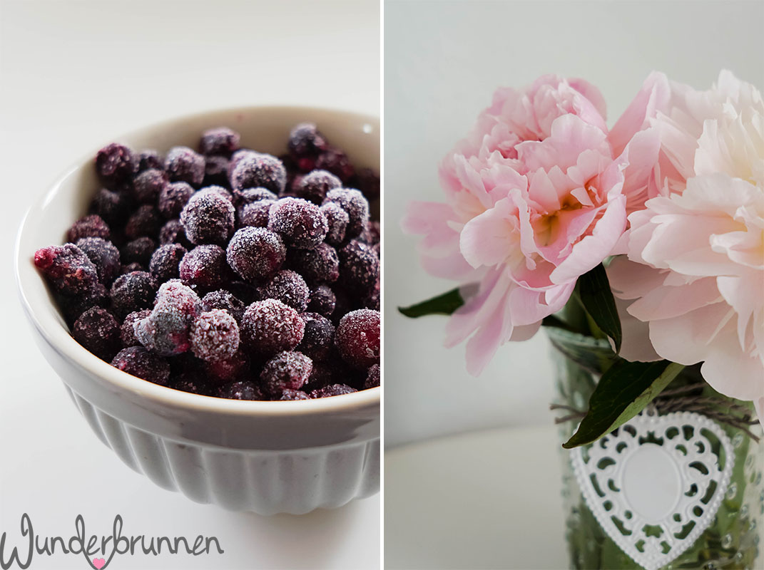 Frozen Blueberries - Pfingstrose - Wunderbrunnen - Foodblog - Fotografie