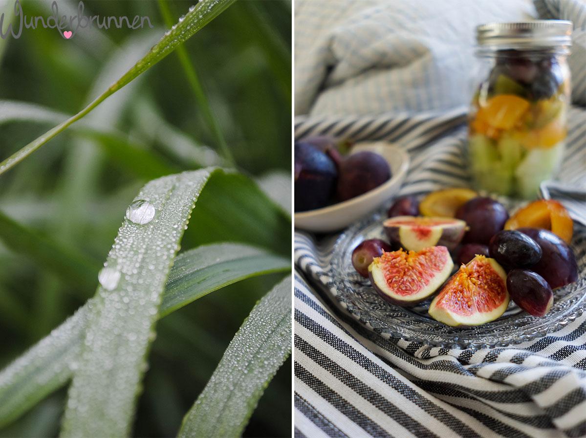 Hallo September! Feigen - Wunderbrunnen - Foodblog - Fotografie