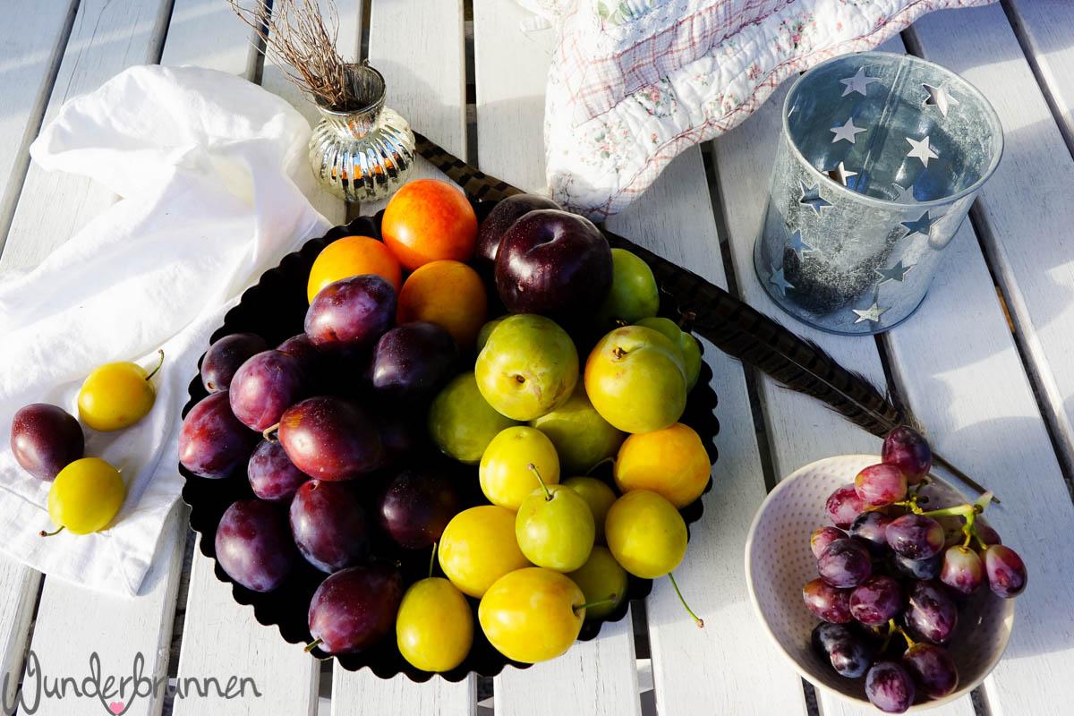 Hallo September! Pflaumen - Wunderbrunnen - Foodblog - Fotografie