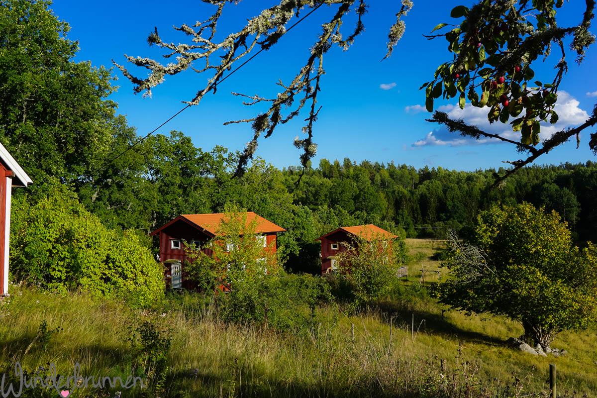 Traumhaus in Schweden - Wunderbrunnen - Foodblog - Fotografie