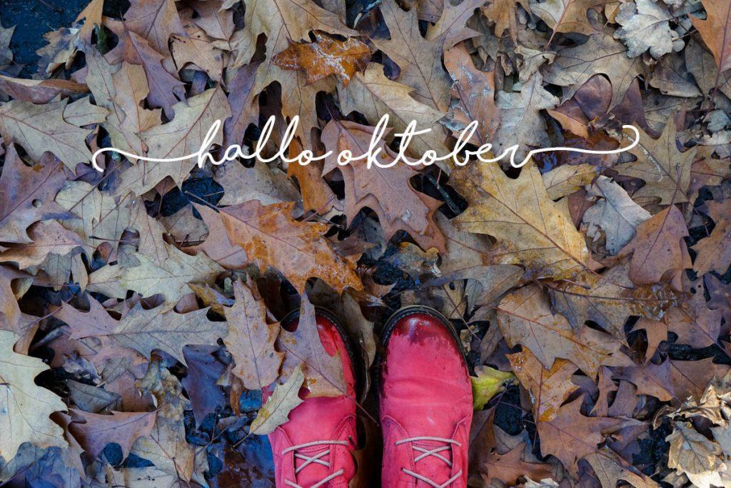 Oktober - Wunderbrunnen - Foodblog - Fotografie