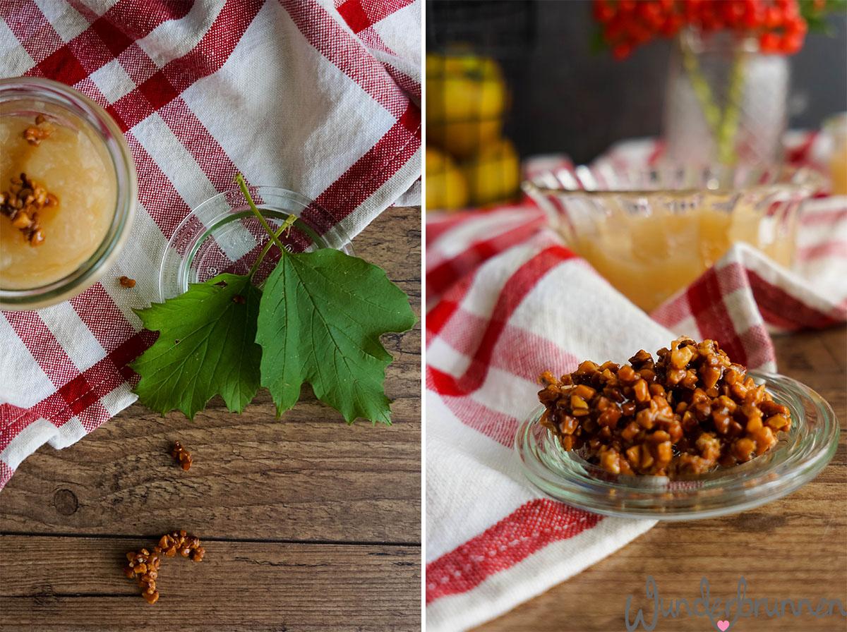 Apfelmus und Mandelcrunch - Wunderbrunnen - Foodblog - Fotografie