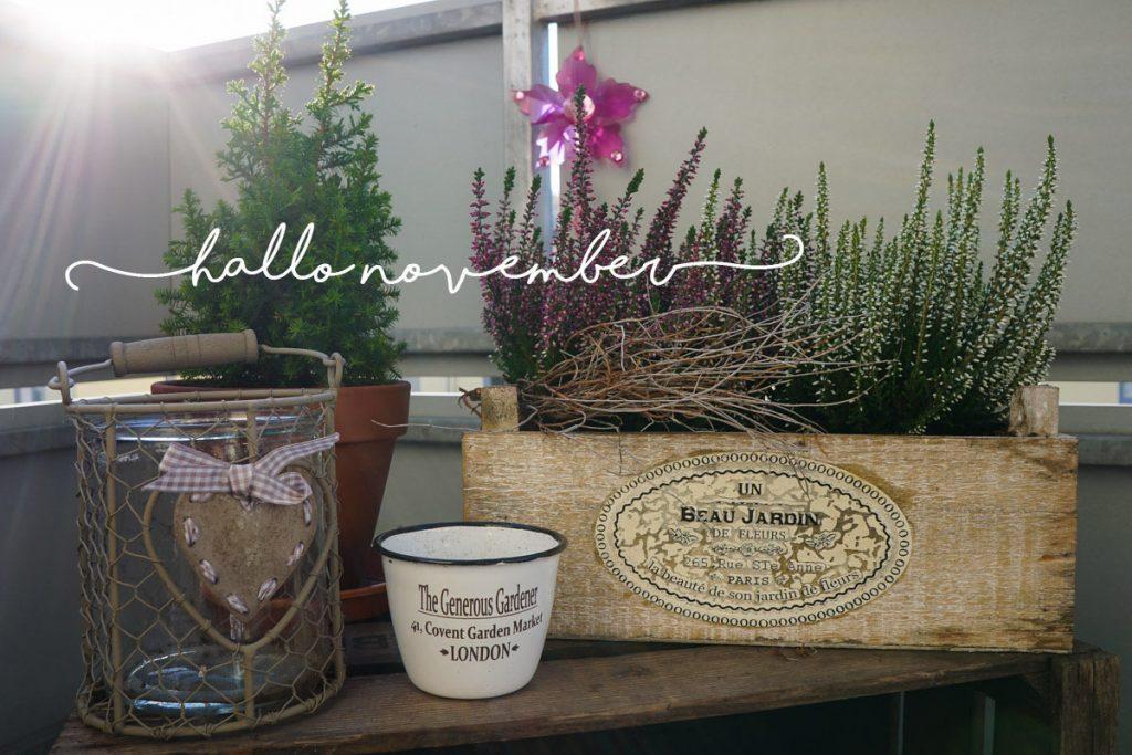 November - Wunderbrunnen - Foodblog - Fotografie