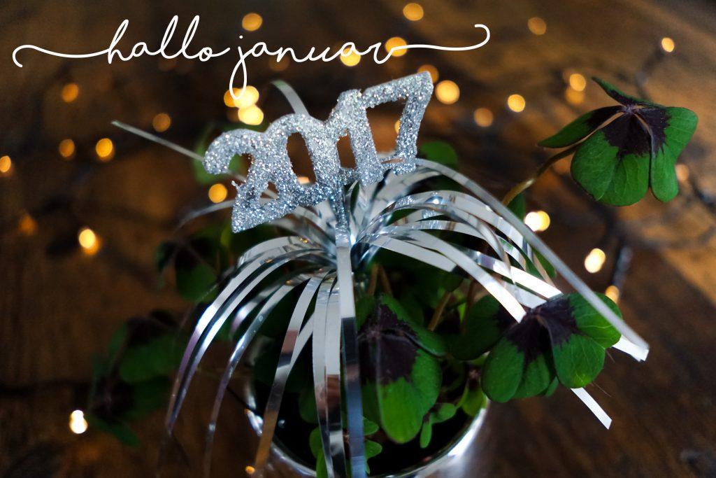 Hallo Januar - Wunderbrunnen - Foodblog - Fotografie