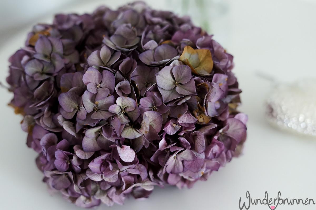 Waffeln - Wunderbrunnen - Foodblog - Fotografie