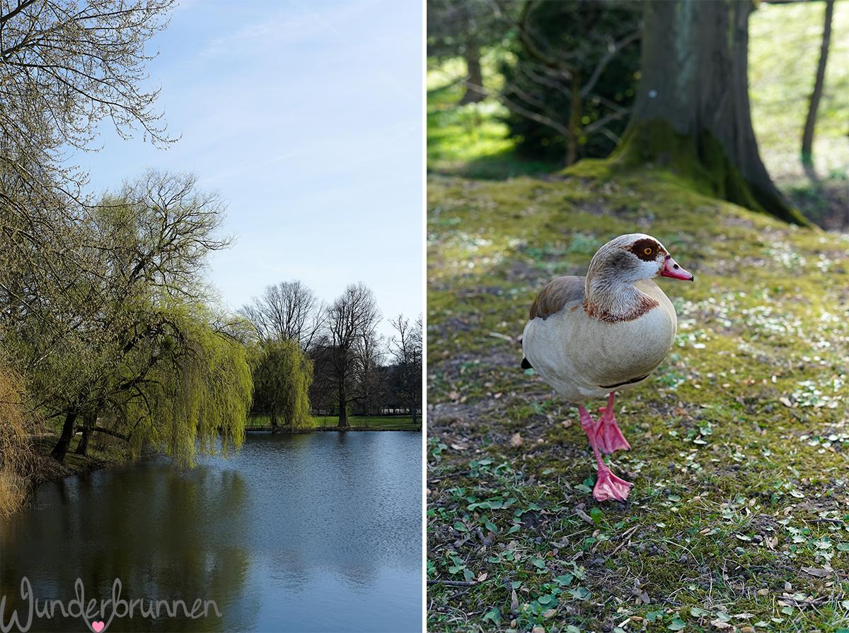Hallo April - Wunderbrunnen - Foodblog - Fotografie