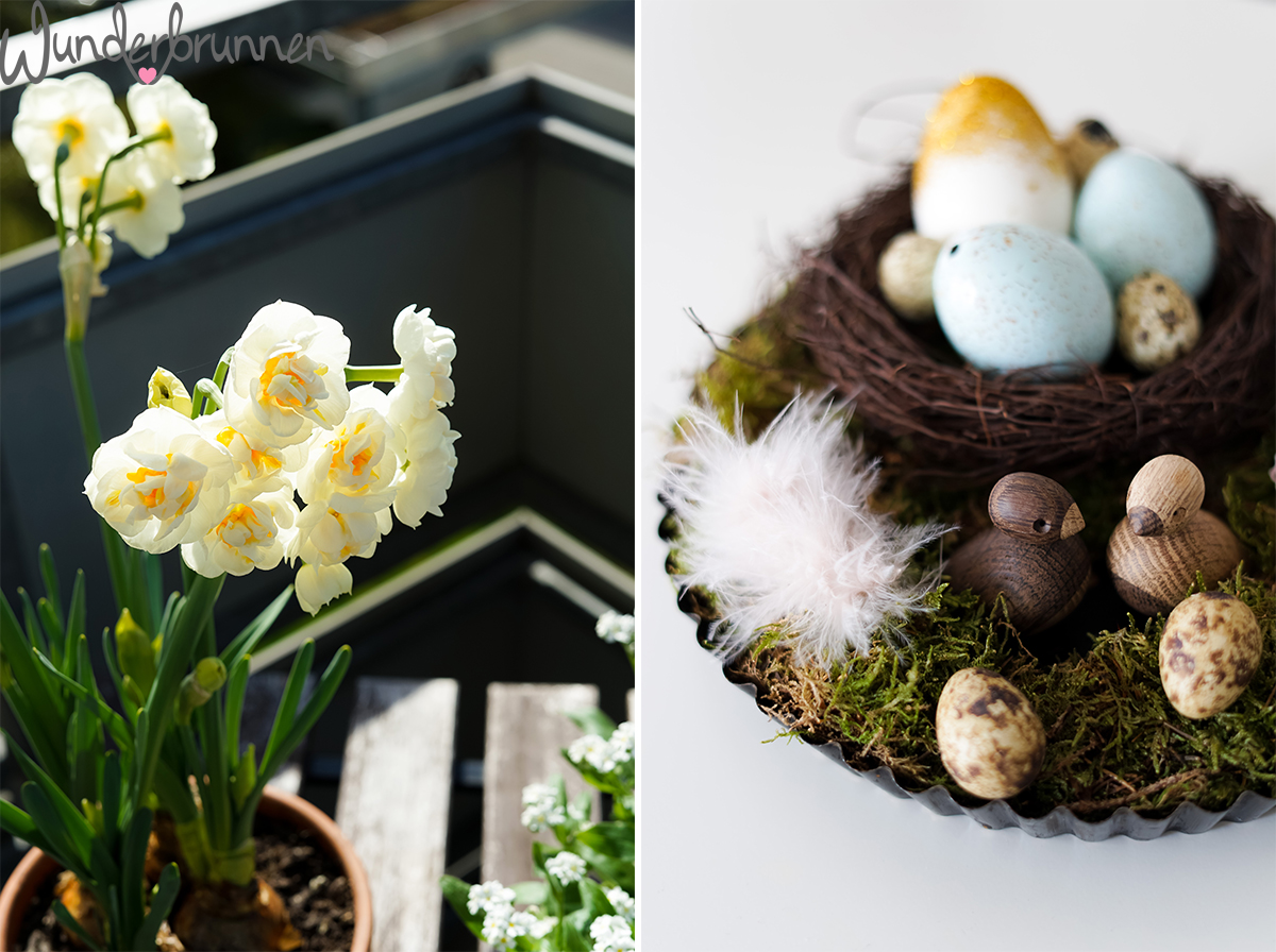 Hallo April - Wunderbrunnen - Foodblog - Fotografie
