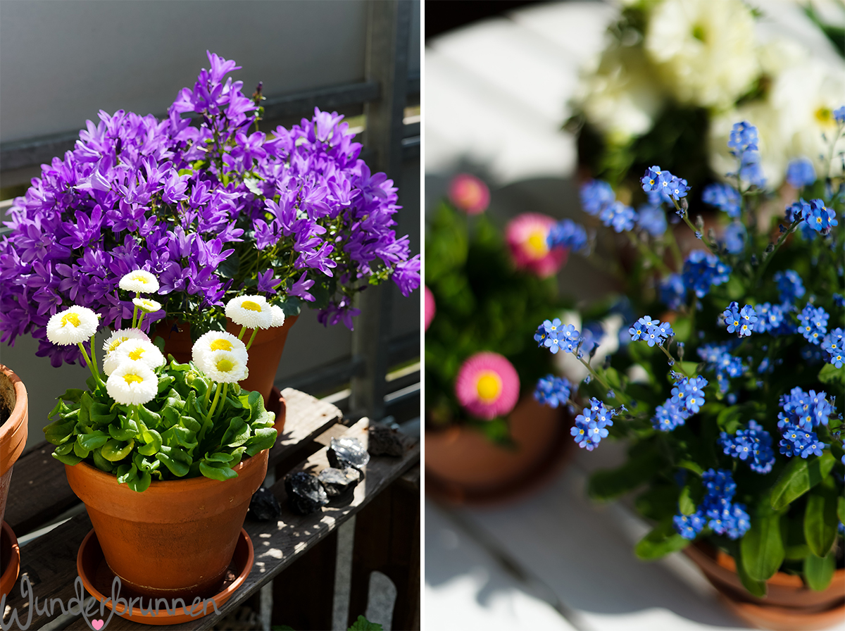 deko-inspiration für ostern und den balkon im frühling - wunderbrunnen, Gartengerate ideen