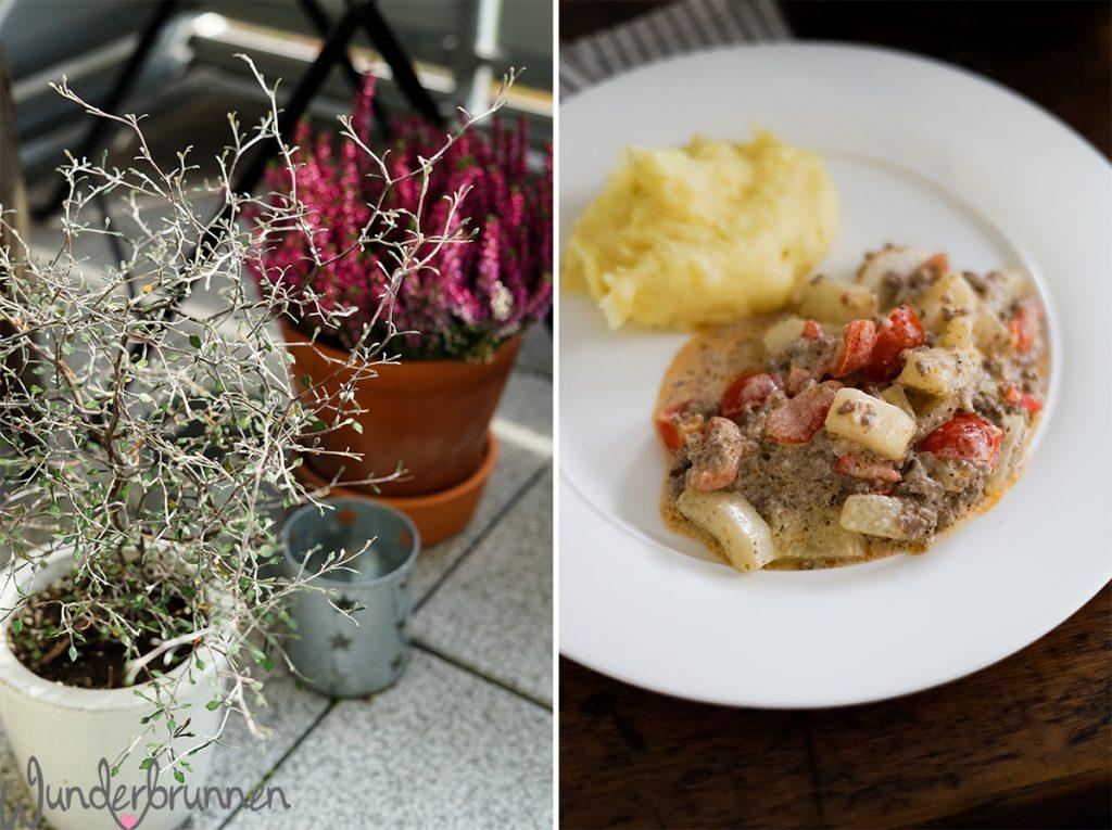 Schmorgurken - Wunderbrunnen - Foodblog - Fotografie