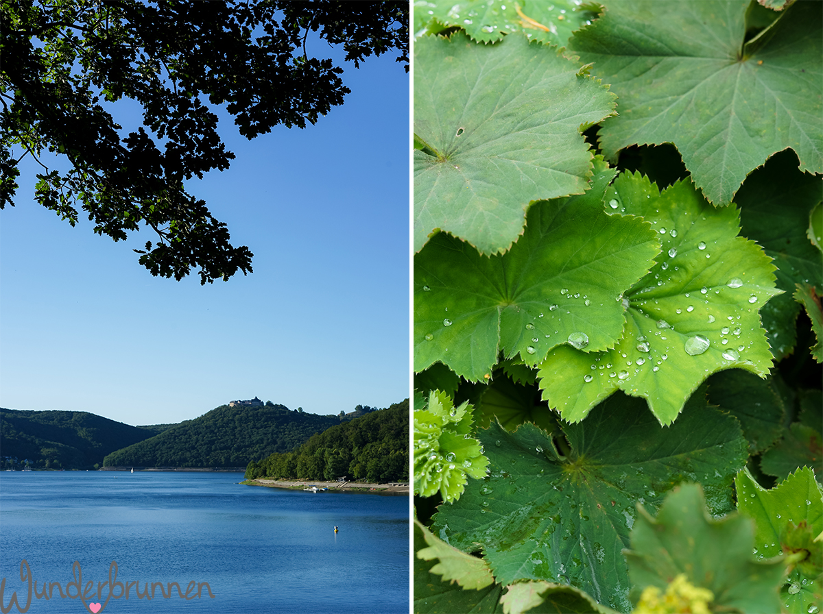 Hallo Juli - Wunderbrunnen - Foodblog - Fotografie