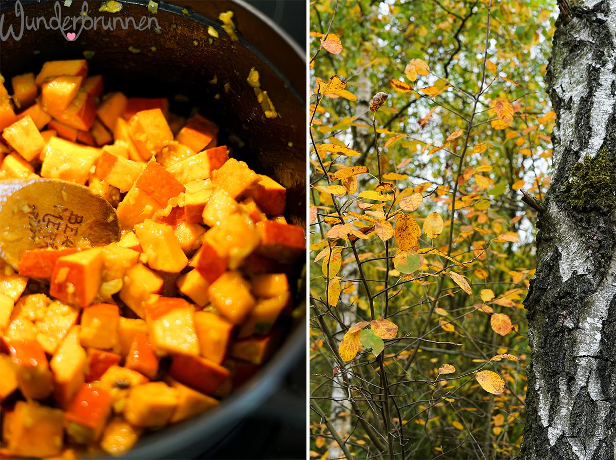 Kürbis-Linsen-Curry - Wunderbrunnen - Foodblog - Fotografie