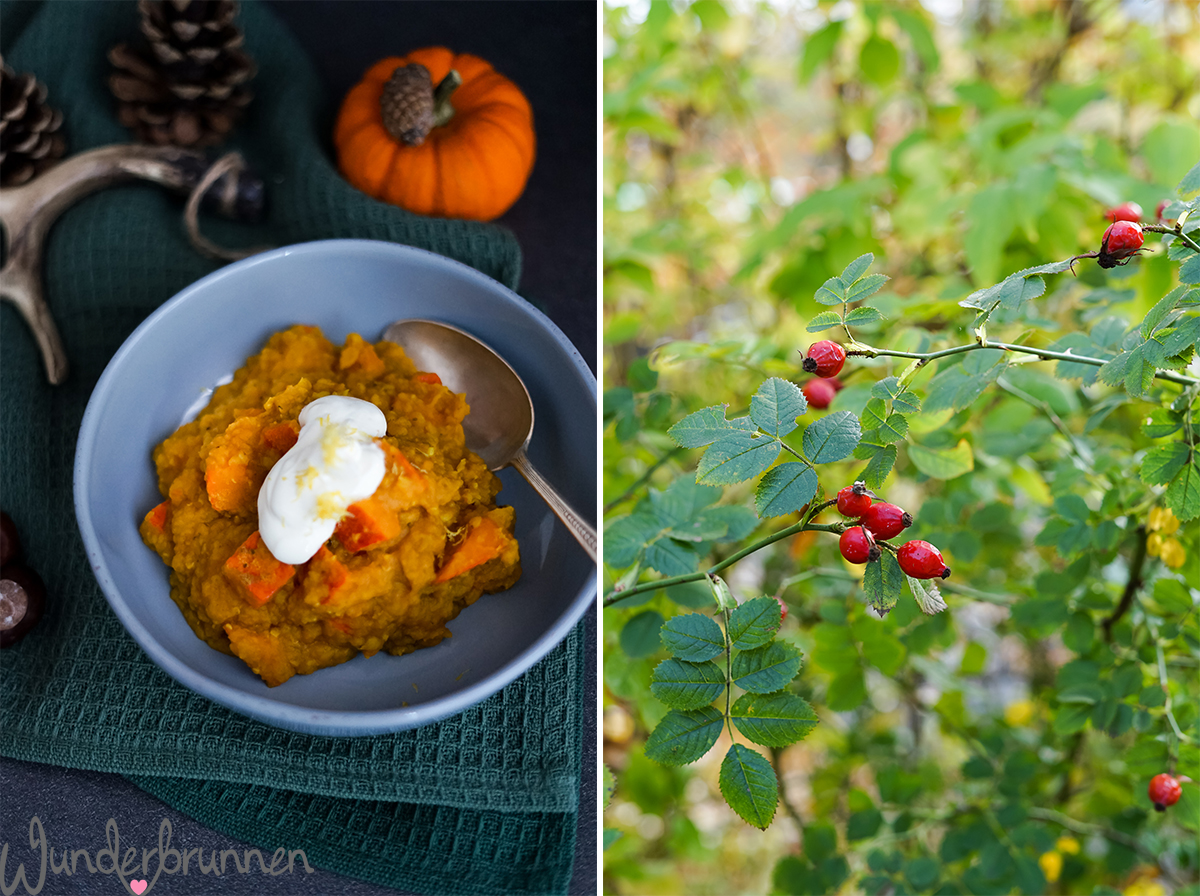 Kürbis-Linsen-Curry - Wunderbrunnen - Foodblog - Fotografie