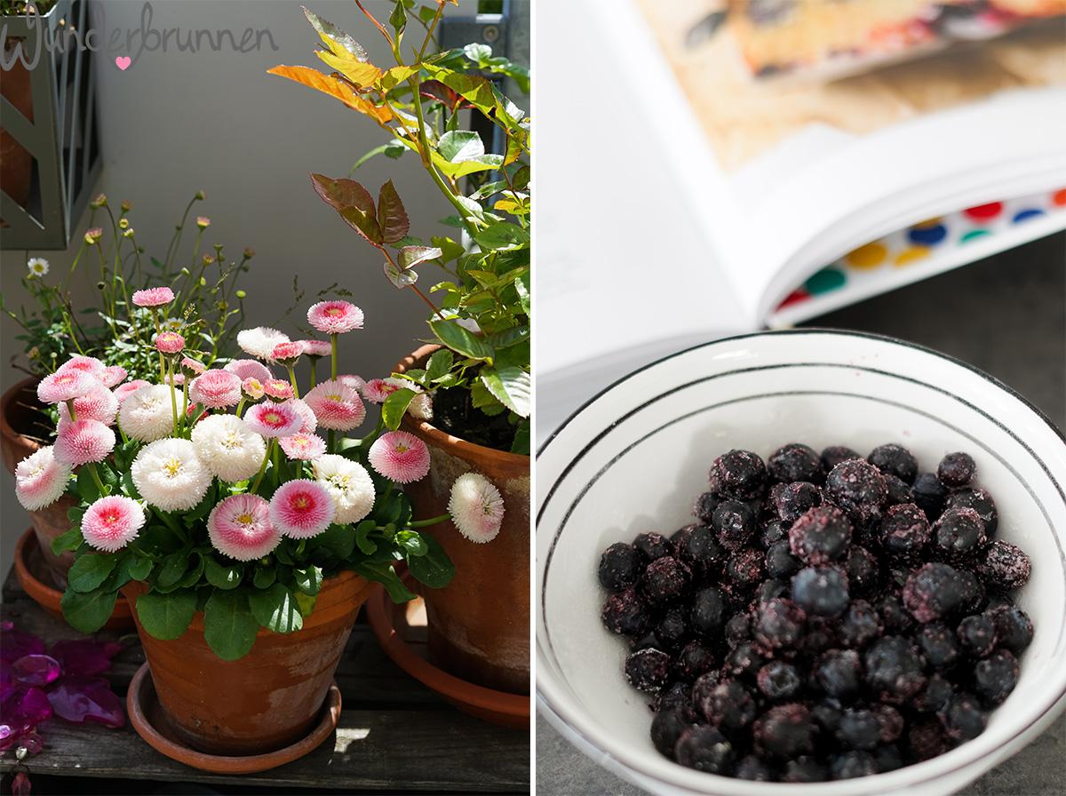 Blaubeerkuchen und Frühlingsblumen - Wunderbrunnen - Foodblog - Fotografie