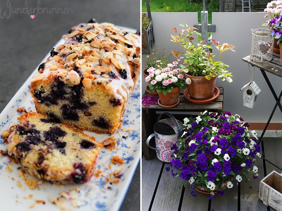Blaubeerkuchen und Hornveilchen-Liebe - Wunderbrunnen - Foodblog - Fotografie